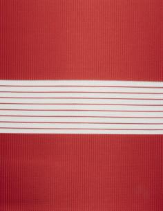 Στόρια Ρόλερ Ζέβρα Colors -...