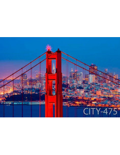 Roller Ψηφιακά CITY 455-560